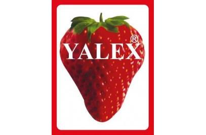 Yalex