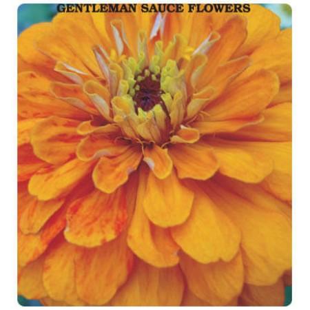Beybeğendi (Karışık Renk) Çiçeği Tohumu