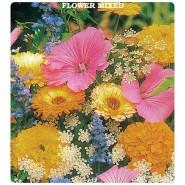 Karışık Çiçekler Tohumları