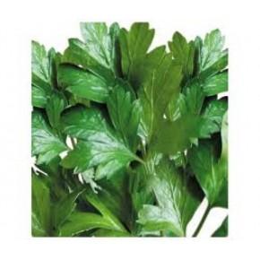Doğal Geniş Yapraklı Maydanoz Tohumu - 10 gr