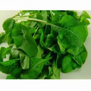 Doğal Geniş Yapraklı Tere Tohumu - 1 Kg