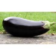 Doğal Kemer Patlıcan Tohumu - 100 gr