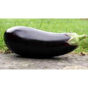Hobi Doğal Kemer Patlıcan Tohumu - 25 Adet