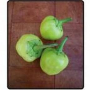 Doğal Misket Biberi Tohumu - 10 gr