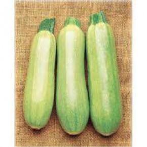 Doğal Sakız Kabak Tohumu - 10 gr