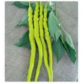 Doğal Sarı Sivri Biber Tohumu - 10 gr