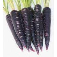 Doğal Siyah Havuç Tohumu - 10 gr