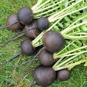 Doğal Siyah Turp Tohumu - 10 Gr