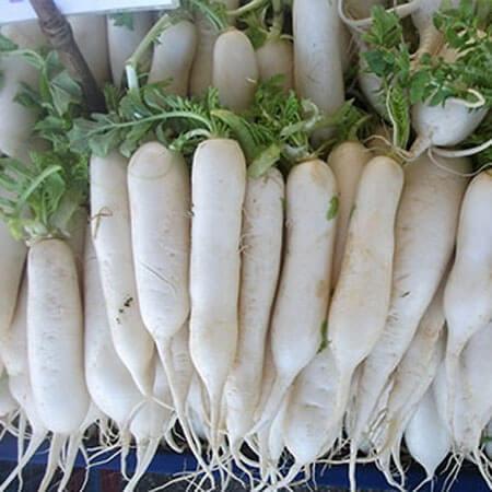 Doğal Uzun Beyaz Turp Tohumu - 100 gr