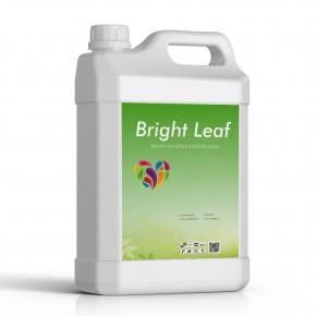 Çiçeklendirici Sıvı Fosfor Gübresi Brigth Leaf - 1 Lt
