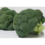 Hibrit Brokoli Tohumu - BURNEY F1 - 2.500 Adet Tohum