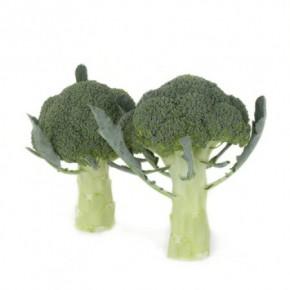 Hibrit Brokoli Tohumu - ORANTES RZ F1 - 2.500 Adet Tohum