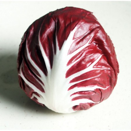 Hibrit Hindiba (Radicchio rosso) Tohumu F1 (Yuvarlak - Kırmızı - Beyaz) - 5.000 Adet Tohum