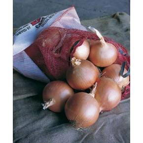 Hibrit Soğan Tohumu F1 (Uzun gün) Çeşit 2 - 100.000 Adet Tohum
