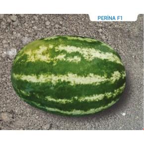 Hibrit Karpuz Tohumu - Perina F1 - 1.000 Adet Tohum