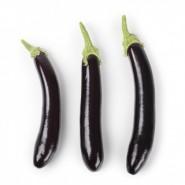Hibrit Patlıcan Tohumu - ANAMUR RZ F1 - 1.000 Adet Tohum