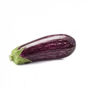 Hibrit Patlıcan Tohumu - ANGELA RZ F1 - 1.000 Adet Tohum