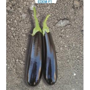 Hibrit Patlıcan Tohumu - Edem F1 - 1.000 Adet Tohum