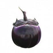 Hibrit Patlıcan Tohumu - SABELLE RZ F1 - 1.000 Adet Tohum