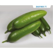 Hibrit Salatalık Tohumu Babymix F1 - 1.000 Adet