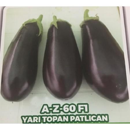 Az-60 F1 Yarı Topan Patlıcan Fidesi - 216 Adet
