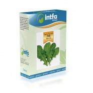 Tere Tohumu Geniş Yapraklı - 100 gr