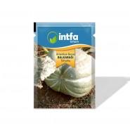 Balkabağı Tohumu Amerikan Beyaz - 10 gr