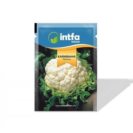 Karnabahar Tohumu İglo - 10 gr