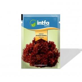 Marul Tohumu Kırmızı Kıvırcık - 5 Gr