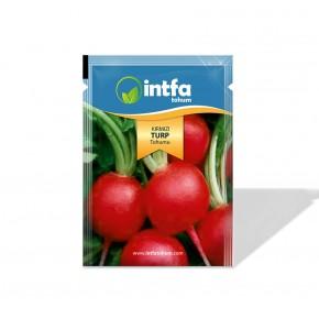 İri Kırmızı Turp Tohumu - 10 gr