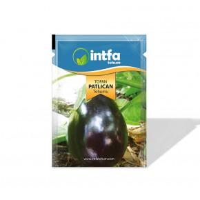 Patlıcan Tohumu Topan - 10 gr
