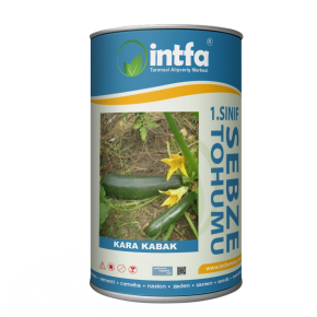 Kara Kabak Tohumu - 1 kg