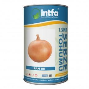 Pan 88 Uzun Gün Soğan Tohumu - 1 Kg