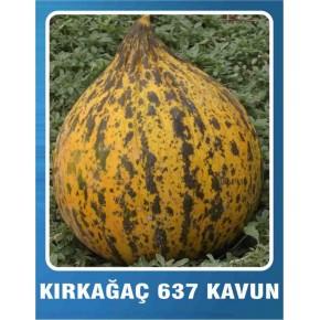 Kavun Tohumu Kırkağaç 637 - 10 gr