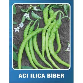 Biber Tohumu Acı Ilıca - 10 gr