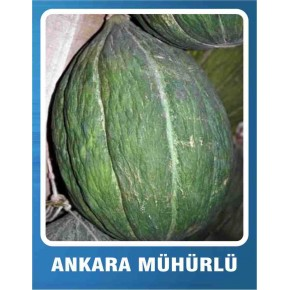 Kavun Tohumu Ankara Mühürlü - 10 gr