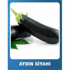 Patlıcan Tohumu Aydın Siyahı - 10 gr
