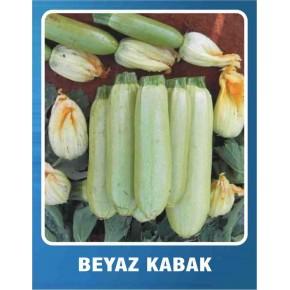 Sofralık Kolsuz Beyaz Kabak Tohumu - 10 gr