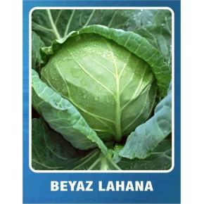 Beyaz Lahana Tohumu - 10 gr