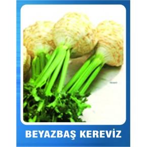 Kereviz Tohumu Beyaz Baş - 10 gr