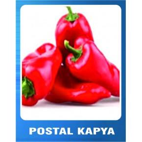Postal Kapya Biber Tohumu - 10 gr