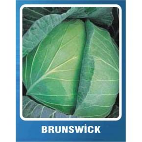 Lahana Tohumu Brunswick - 10 gr