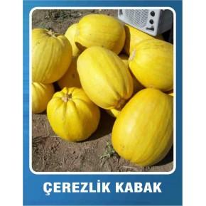 Çerezlik Kabak Tohumu - 10 gr