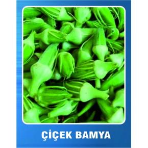Çiçek Bamya Tohumu - 10 gr