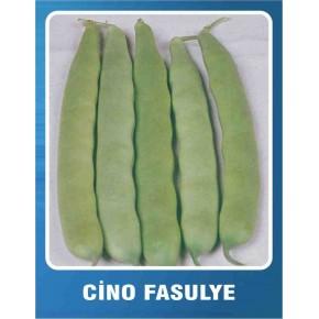 Fasulye Tohumu - Cino (Oturak) - 10 gr