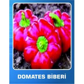 Domates Biberi Tohumu - 10 gr