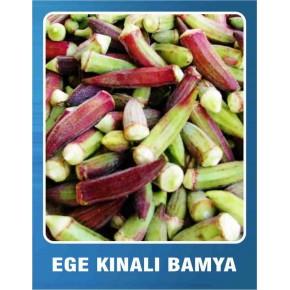 Ege Kınalı Bamya Tohumu - 10 gr
