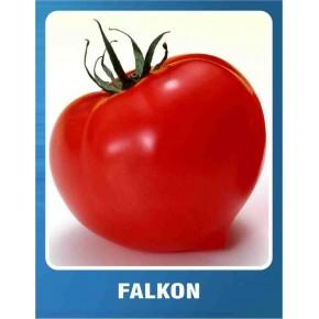 Domates Tohumu Falkon - 10 gr