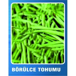 Börülce Tohumu - 10 gr