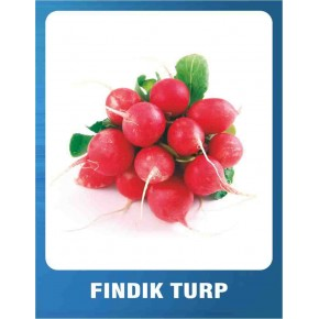 Fındık Turp Tohumu - 10 gr